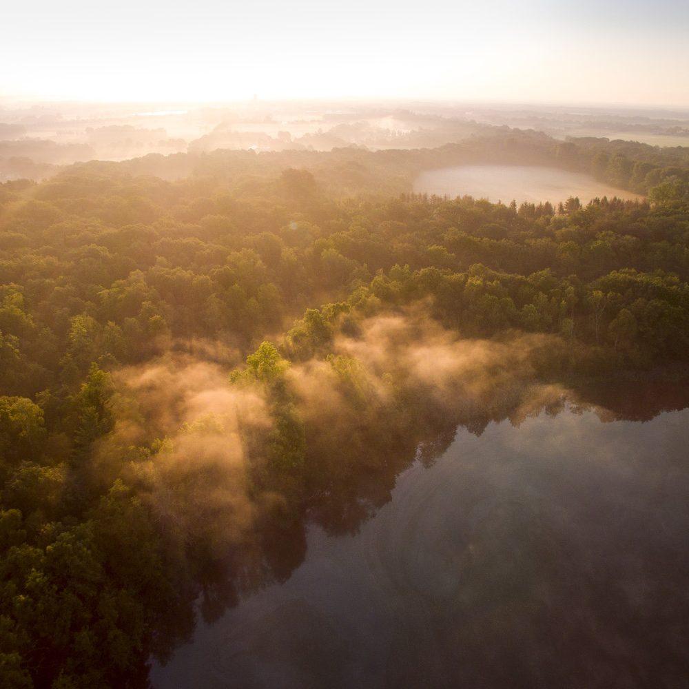 Vogelvluchtperspectief op bos en water